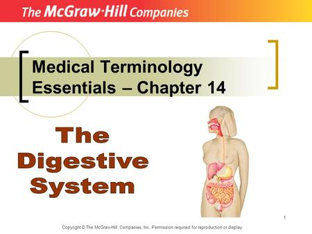 1 Medical Terminology Essentials – Chapter 14 Copyright © The McGraw-Hill Companies, Inc. Permission required for reproduction or display.
