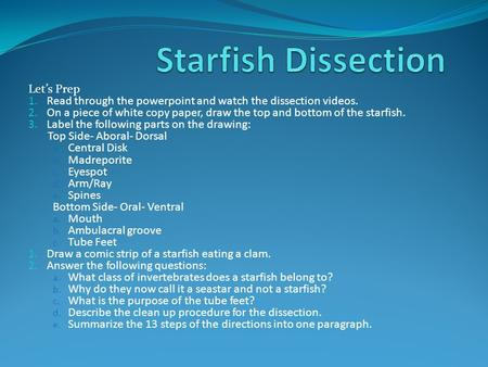 Let's Prep 1. Read through the powerpoint and watch the dissection videos. 2. On a piece of white copy paper, draw the top and bottom of the starfish.