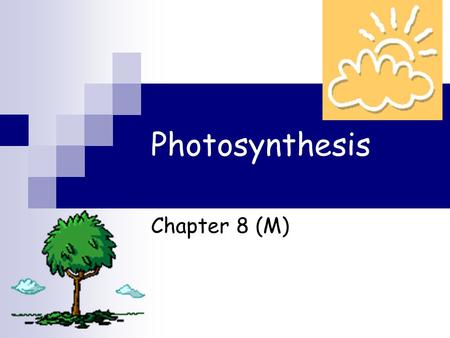 Photosynthesis Chapter 8 (M). Energy and Life Section 8.1.
