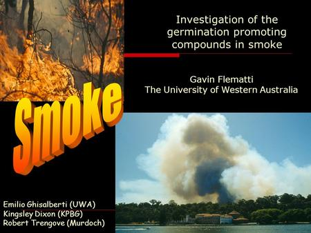 Emilio Ghisalberti (UWA) Kingsley Dixon (KPBG) Robert Trengove (Murdoch) Investigation of the germination promoting compounds in smoke Gavin Flematti The.