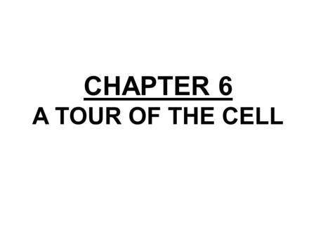 CHAPTER 6 A TOUR OF THE CELL. Section A: How We Study Cells 1.Microscopes provide windows to the world of the cell 2.Cell biologists can isolate organelles.
