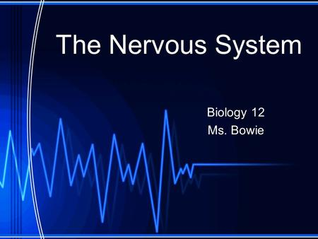 The Nervous System Biology 12 Ms. Bowie. Divisions on the Nervous System.