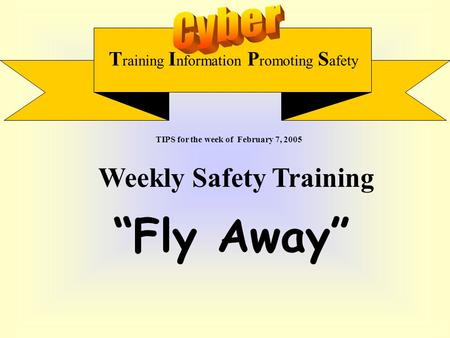 "T raining I nformation P romoting S afety Weekly Safety Training ""Fly Away"" TIPS for the week of February 7, 2005."