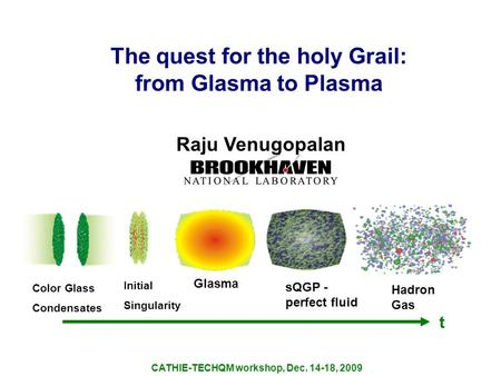 The quest for the holy Grail: from Glasma to Plasma Raju Venugopalan CATHIE-TECHQM workshop, Dec. 14-18, 2009 Color Glass Condensates Initial Singularity.