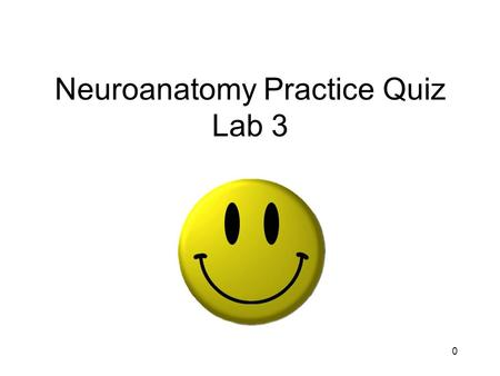 0 Neuroanatomy Practice Quiz Lab 3. 1 Identify the structure indicated by the arrows.