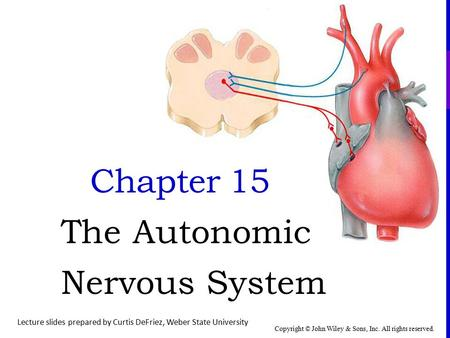 Copyright © John Wiley & Sons, Inc. All rights reserved. Chapter 15 The Autonomic Nervous System Lecture slides prepared by Curtis DeFriez, Weber State.