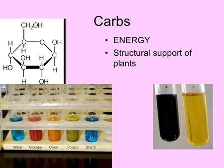 Carbs ENERGY Structural support of plants. Proteins.