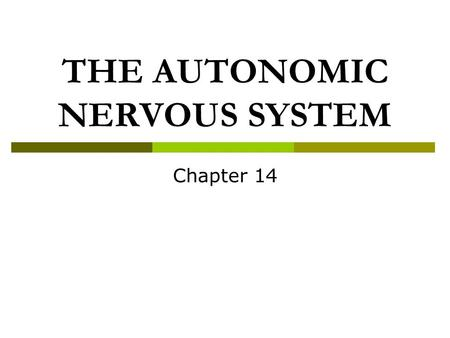 THE AUTONOMIC NERVOUS SYSTEM Chapter 14. Divisions of the Nervous System.
