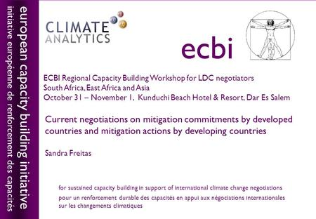 European capacity building initiativeecbi Current negotiations on mitigation commitments by developed countries and mitigation actions by developing countries.