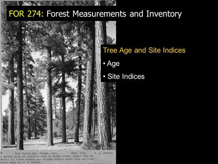 FOR 274: Forest Measurements and Inventory Tree Age and Site Indices Age Site Indices.