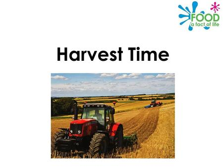 Harvest Time. © Food – a fact of life 2012 Why is harvest celebrated? Harvest Festival is a Christian celebration to give thanks for the crops which have.