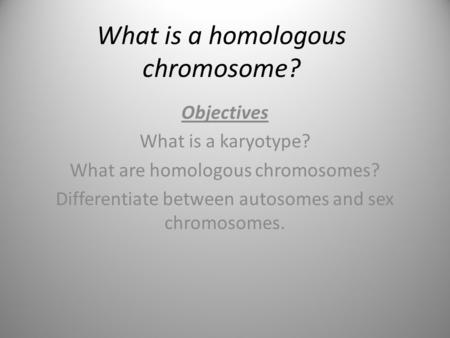What is a homologous chromosome?