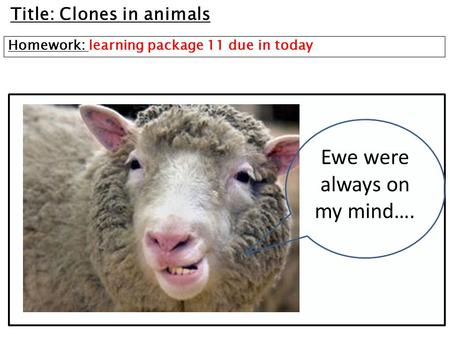 Title: Clones in animals Homework: learning package 11 due in today Ewe were always on my mind….