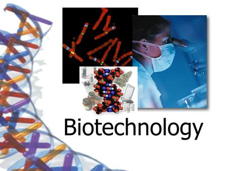 Biotechnology. Breeding The first biotechnology Selective Breeding The breeding of organisms to produce certain desired traits in their offspring.