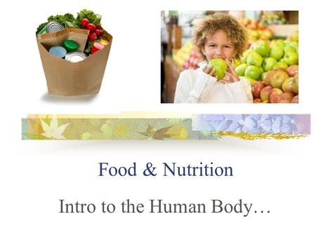 Food & Nutrition Intro to the Human Body…. You are what you eat: Food supplies energy & raw materials for growth & repair (including at least 45 substances.