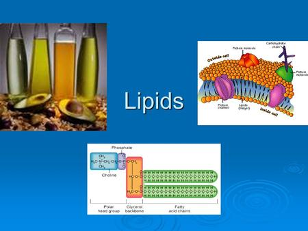 Lipids. Characteristics of Lipids  NONPOLAR (neutral)  DO NOT dissolve in water Hydrophobic Hydrophobic (at least part of the molecule)(at least part.