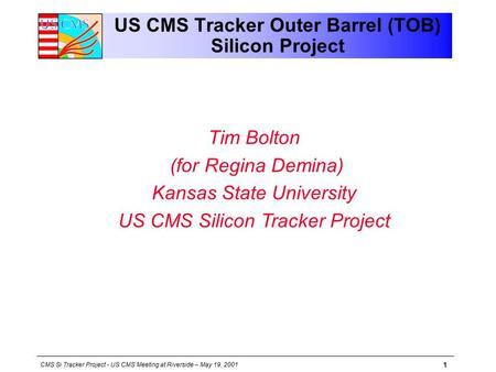 CMS Si Tracker Project - US CMS Meeting at Riverside – May 19, 2001 1 US CMS Tracker Outer Barrel (TOB) Silicon Project Tim Bolton (for Regina Demina)