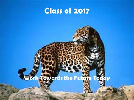 Class of 2017 Work Towards the Future Today. Number of Credits You must have a minimum of 23 credits to receive a diploma from Douglas County School System.