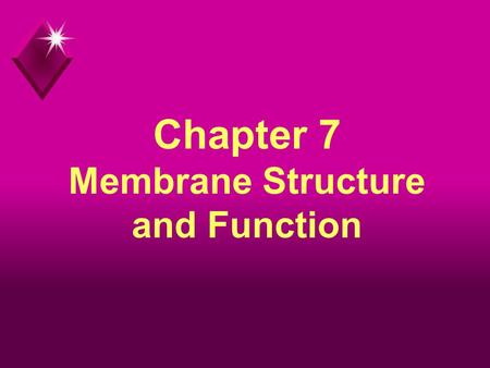 Chapter 7 Membrane Structure and Function. Plasma Membrane u The membrane at the boundary of every cell. u Functions as a selective barrier for the passage.