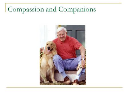 Compassion and Companions. Seniors Helping Animals Compassion and Companions Compassion and Companions is a program that will address the needs of homeless.