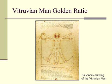 Vitruvian Man Golden Ratio Da Vinci's drawing of the Vitruvian Man.