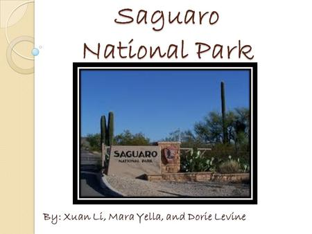 Saguaro National Park By: Xuan Li, Mara Yella, and Dorie Levine.