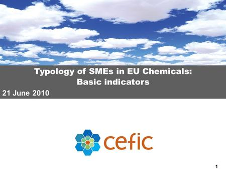 1 Typology of SMEs in EU Chemicals: Basic indicators 21 June 2010.