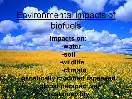 Environmental impacts of biofuels Impacts on: -water -soil -wildlife -climate genetically modified rapeseed global perspective sustainability.