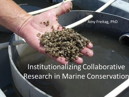 Institutionalizing Collaborative Research in Marine Conservation Amy Freitag, PhD.