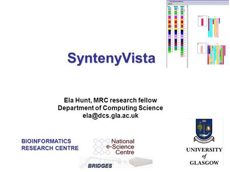 Ela Hunt, MRC research fellow Department of Computing Science SyntenyVista BIOINFORMATICS RESEARCH CENTRE.