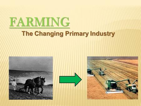 FARMING The Changing Primary Industry. History The first farming is rooted in ancient Turkey 10 000 ya, when nomadic tribes settled. Using wild grasses,