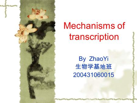 Mechanisms of transcription By ZhaoYi 生物学基地班 200431060015.