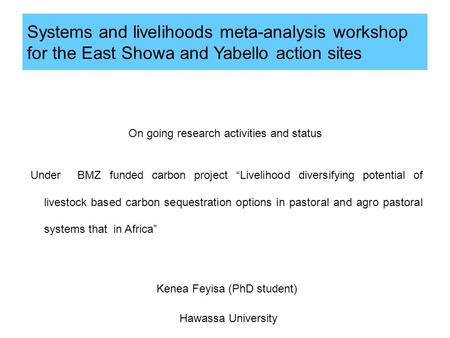 Systems and livelihoods meta-analysis workshop for the East Showa and Yabello action sites On going research activities and status Under BMZ funded carbon.