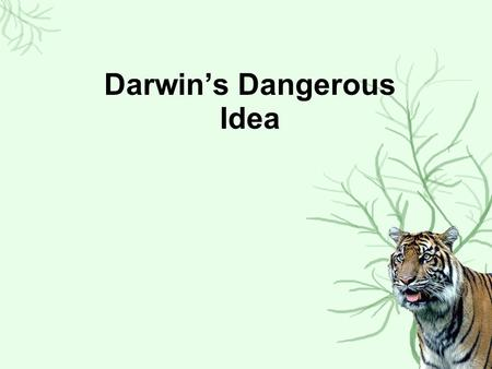 Darwin's Dangerous Idea. 1.Earth Is 10,000 Old (Ussher) 2.Species are fixed Pre-Darwinian beliefs 1.Earth Is MUCH older (Buffon) 1.Sudden changes; catastrophism.