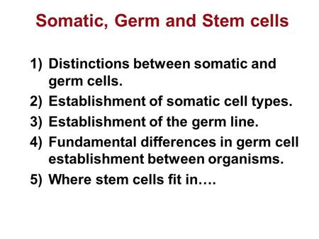 Somatic, Germ and Stem cells 1)Distinctions between somatic and germ cells. 2)Establishment of somatic cell types. 3)Establishment of the germ line. 4)Fundamental.
