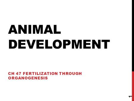 ANIMAL DEVELOPMENT CH 47 FERTILIZATION THROUGH ORGANOGENESIS 1.
