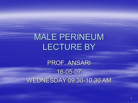 MALE PERINEUM LECTURE BY