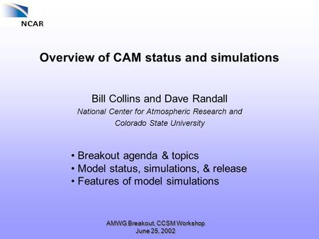 AMWG Breakout, CCSM Workshop June 25, 2002 Overview of CAM status and simulations Bill Collins and Dave Randall National Center for Atmospheric Research.