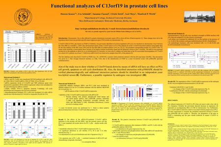 *  Functional analyzes of C13orf19 in prostate cell lines Doreen Kunze.
