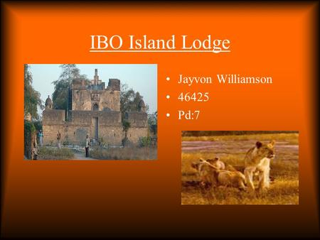 IBO Island Lodge Jayvon Williamson 46425 Pd:7. Ocean view If you like water there is a beautiful sea view were you can also find exotic animals. There.