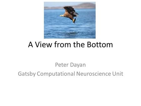 A View from the Bottom Peter Dayan Gatsby Computational Neuroscience Unit.