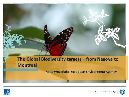 SEBI Indicator developments Katarzyna Biała European Environment Agency Katarzyna Biała, European Environment Agency The Global Biodiversity targets –