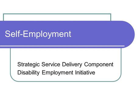 Self-Employment Strategic Service Delivery Component Disability Employment Initiative.