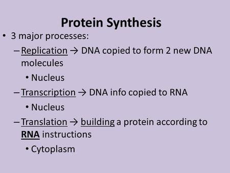 Protein Synthesis 3 major processes: – Replication → DNA copied to form 2 new DNA molecules Nucleus – Transcription → DNA info copied to RNA Nucleus –