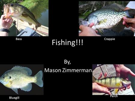 Fishing!!! By, Mason Zimmerman BassCrappie Bluegill Perch.
