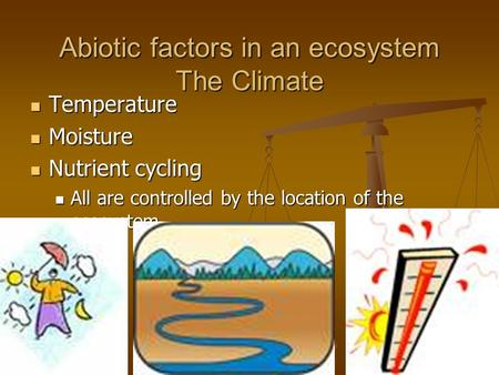Abiotic factors in an ecosystem The Climate Temperature Temperature Moisture Moisture Nutrient cycling Nutrient cycling All are controlled by the location.