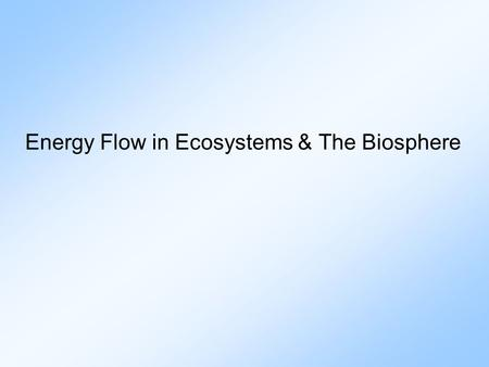 Energy Flow in Ecosystems & The Biosphere. Important Vocabulary 1. Ecology: study of the relationships among organisms & between organisms & their physical.