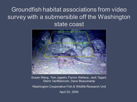 Groundfish habitat associations from video survey with a submersible off the Washington state coast Susan Wang, Tom Jagielo, Farron Wallace, Jack Tagart,