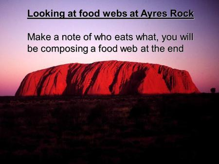 Looking at food webs at Ayres Rock Make a note of who eats what, you will be composing a food web at the end.