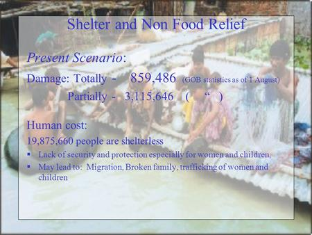 "Shelter and Non Food Relief Present Scenario: Damage: Totally - 859,486 (GOB statistics as of 1 August) Partially - 3,115,646 ( "" ) Human cost: 19,875,660."